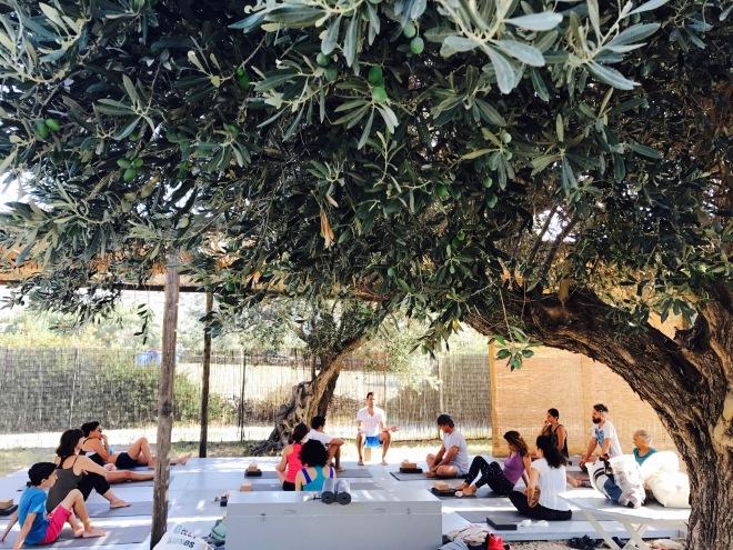 Yoga Shala Sifnos