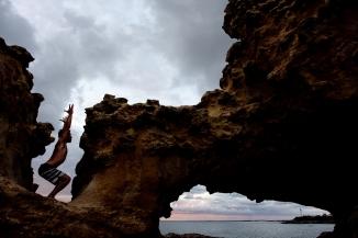 dri yogi 31